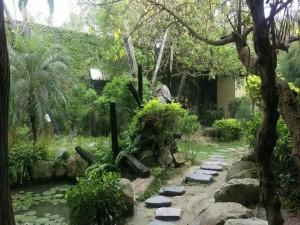 露天生態叢林的聽雨軒